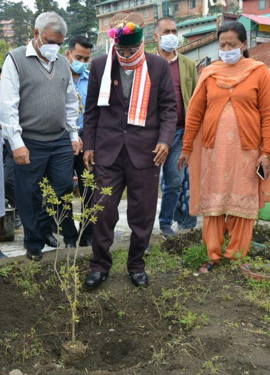 विश्व पर्यावरण दिवस पर दत्तात्रेय ने बाबा भलकू रेल संग्रहालय परिसर शिमला में किया पौधरोपण
