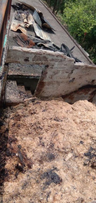 बिलासपुर के ग्लयाना मे बिजली के शॉटसर्किट से जली पशुशाला