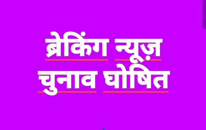 चौपाल, टूटू और मंडी के धर्मपुर ब्लॉक को छोड़कर शिमला के अन्य ब्लॉक में पंचायत चुनाव की अनुमति