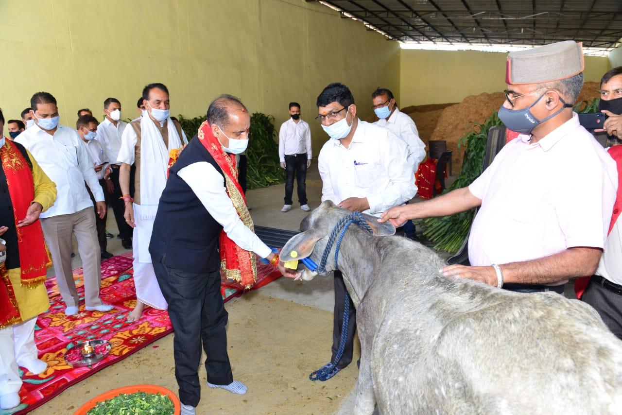 मुख्यमंत्री ने थानाकलां में गौ अभयारण्य का दौरा किया