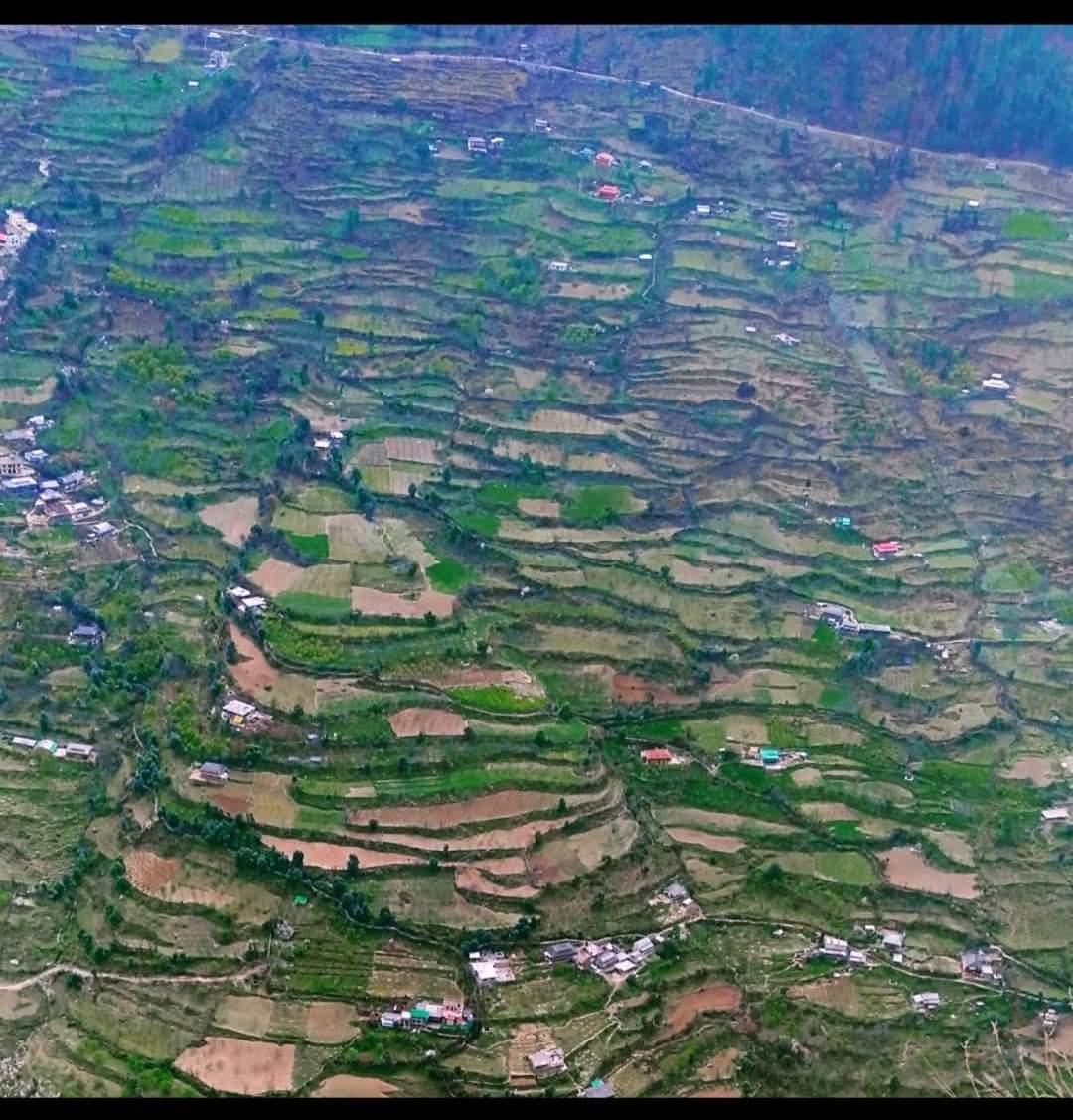 कृषि विभाग द्वारा खरीफ सीजन की फसलों के बीमा को लेकर अधिसूचना जारी, 48 रूपए प्रति बीघा प्रीमियम देकर लें लाभ