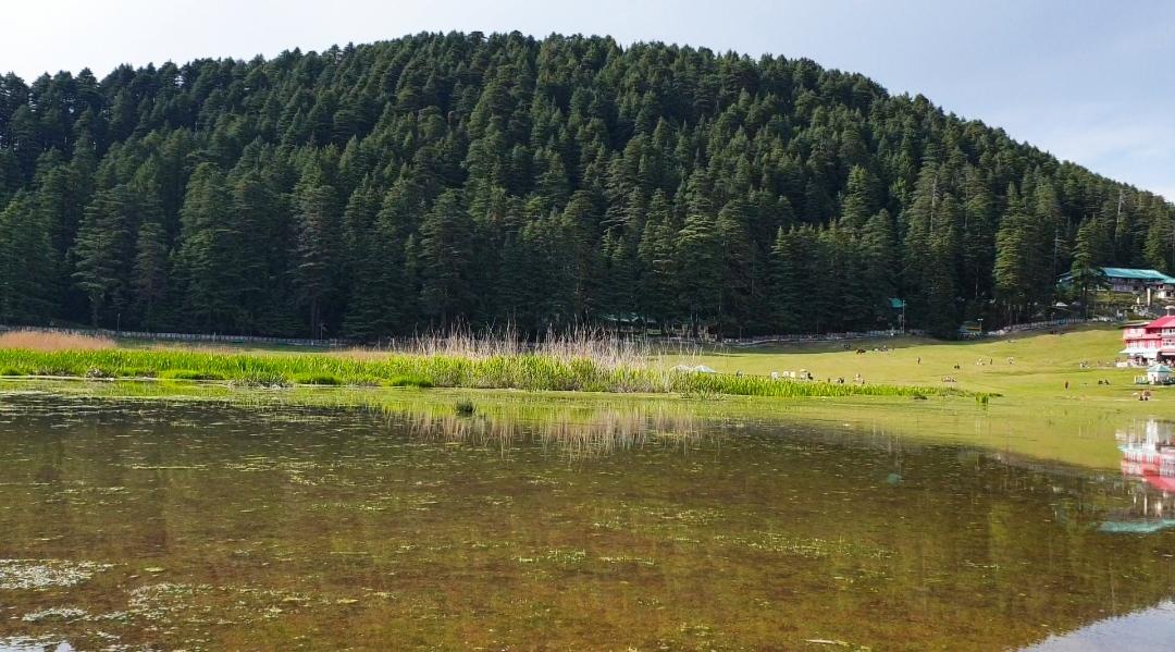 चम्बा-खज्जियार की पवित्र झील में सैंकड़ो मछलियों की मौत, पर्यटक व स्थानीय लोग परेशान